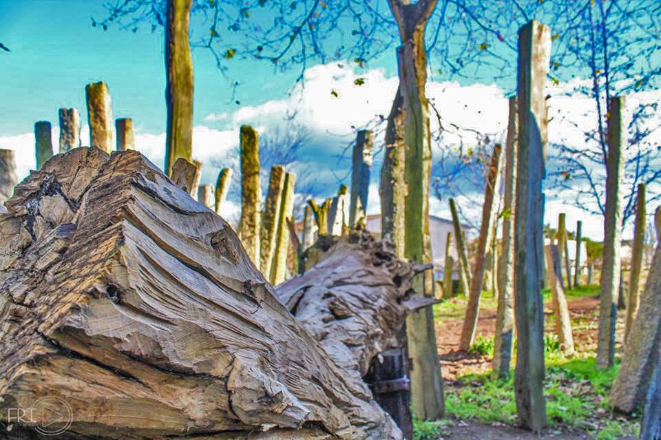 jardim-escultura-2